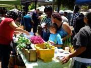 Supporting healthy economic revitalization:  Richmond Main Street Healthy Village Farm Stand
